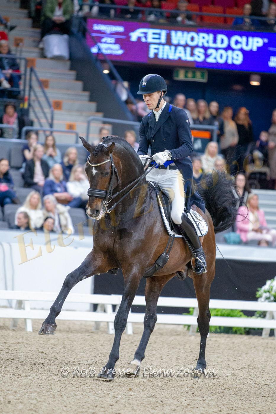 DANIEL BACHMANN ANDERSEN – BLUE HORS ZACK (2)