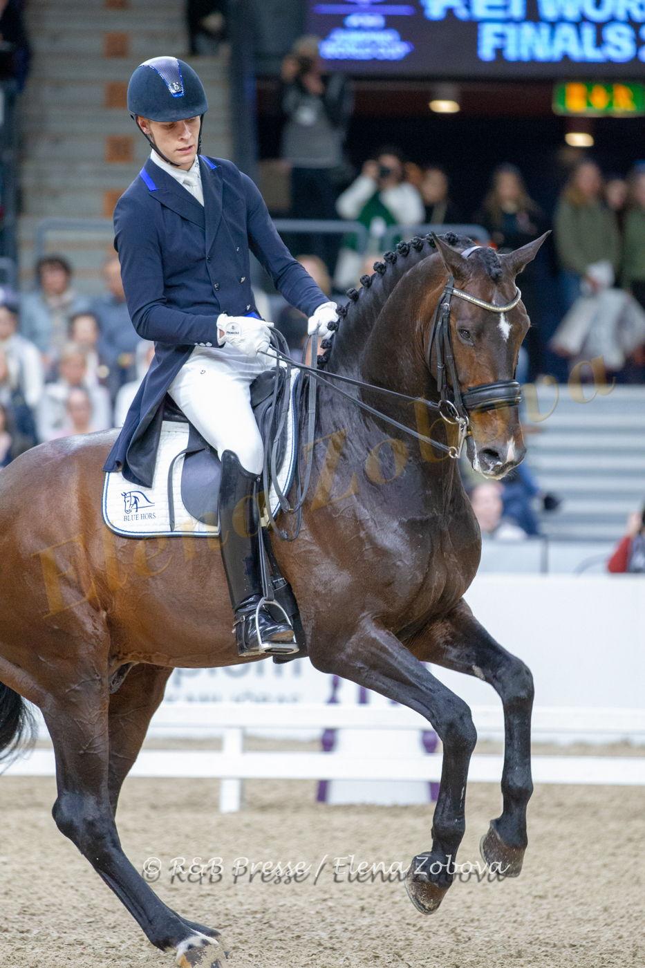 DANIEL BACHMANN ANDERSEN – BLUE HORS ZACK (6)