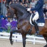 DANIEL BACHMANN ANDERSEN – BLUE HORS ZACK (9)